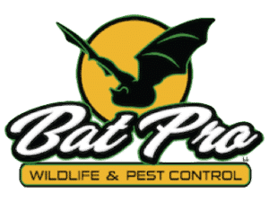 Bat Pro Wildlife and Pest Control in Michigan