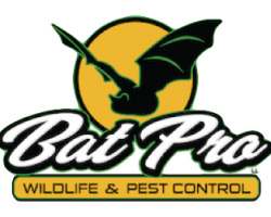 Bat Pro Wildlife & Pest Control, Michigan