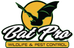 Bat Pro Wildlife & Pest Control, Michigan